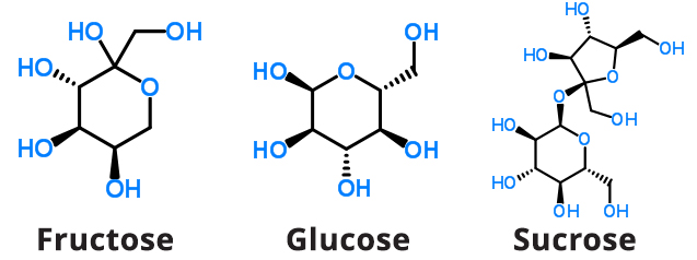 Fructose Glucose Sucrose Chemical Structures