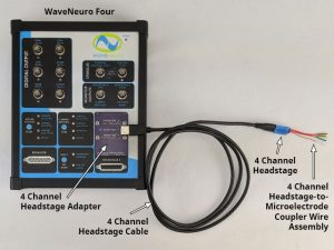 WaveNeuro Four Basic Bundle with 4-Channel Headstage Kit