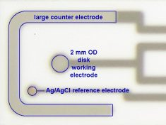 Each Electrode Pattern Includes Working, Reference, and Counter Electrode