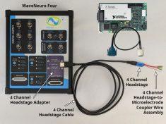 WaveNeuro Four Plus Bundle with 4-Channel Headstage Kit