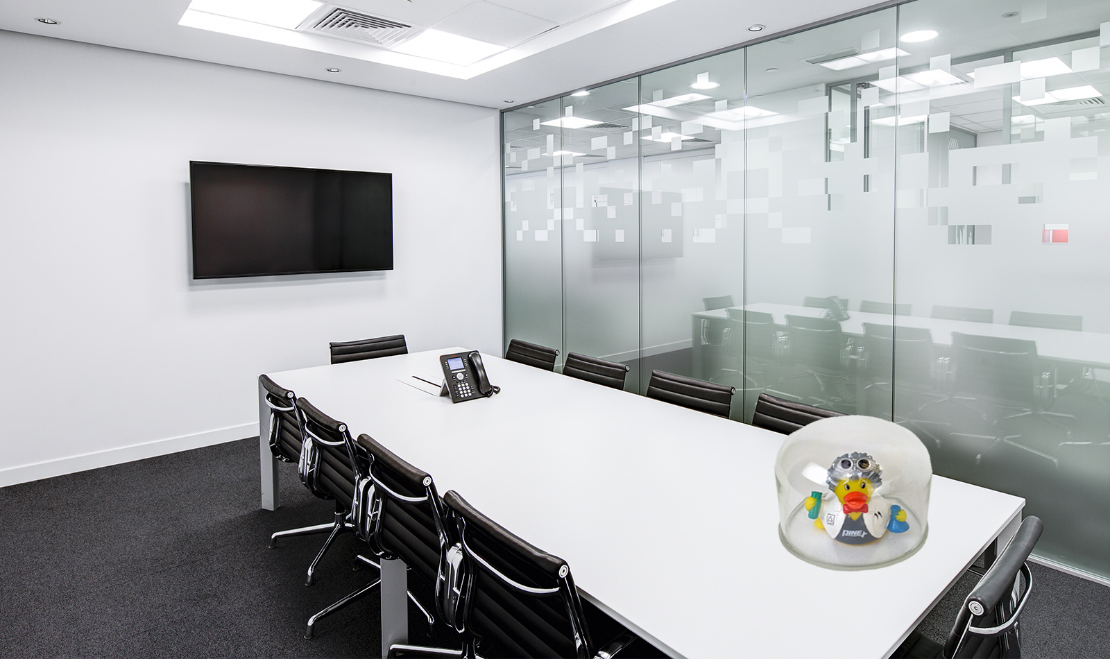Emtpy conference room with Dr. Reducks under glass