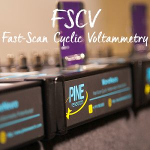 Fast-Scan Cyclic Voltammetry for Neuroelectrochemistry
